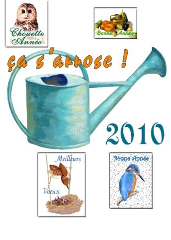 Cartes voeux 2010